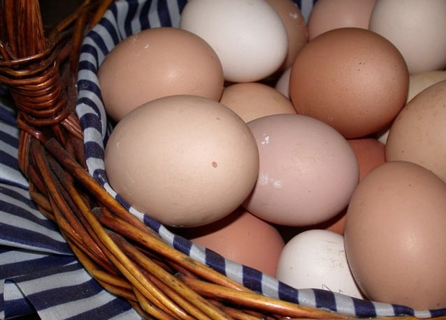 Польза вареных яиц на завтрак: мифы и правда о яйцах