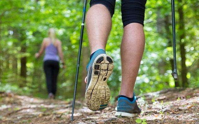 Скандинавская ходьба с палками: как правильно ходить и в чем польза?