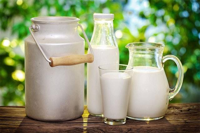 Полезно ли молоко взрослому человеку: мифы и реальность